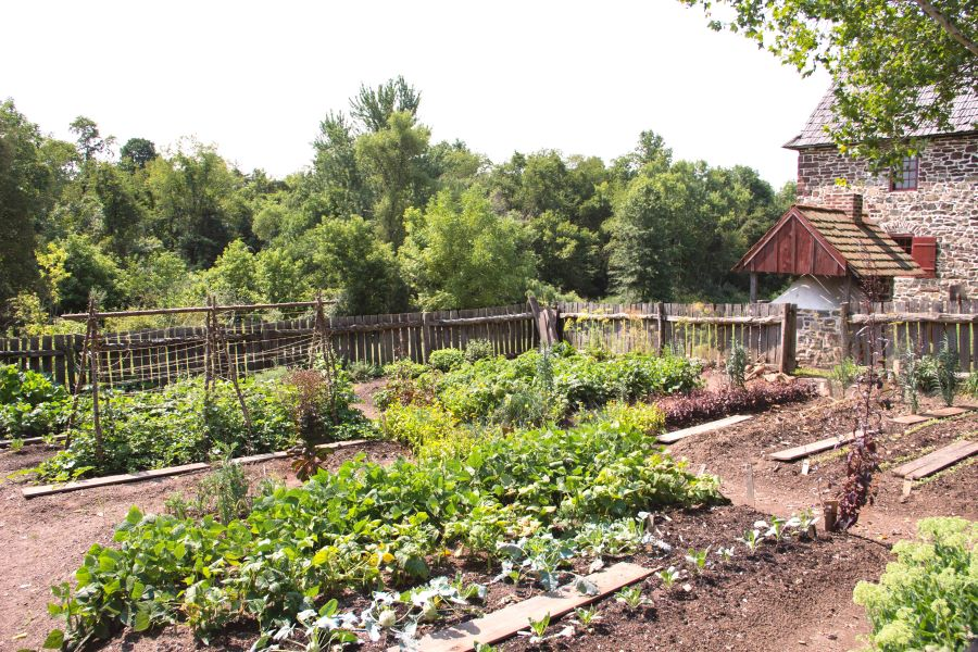 Gardens And Gardening Among The Pennsylvania Germans Part 1